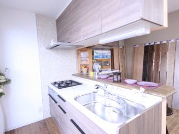 【現品特価】キッチン+家電収納 アレスタ